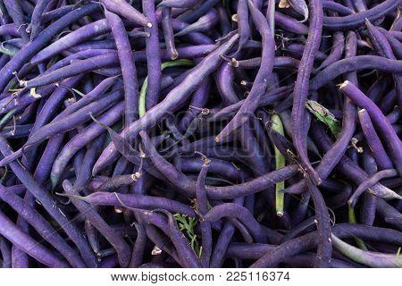 Purple Green Beans