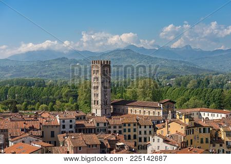 Aerial view of the ancient town of Lucca with the Basilica of San Frediano (XII century). Toscana (Tuscany), Italy, Europe