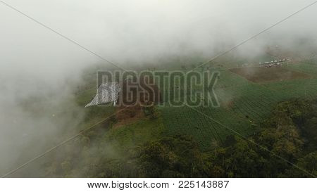 Aerial view of farmland, fields, trees with white fog, clouds Jawa island, Indonesia. Fog, cloud over farmland. Rural mountain landscape of fields with fence, trees.