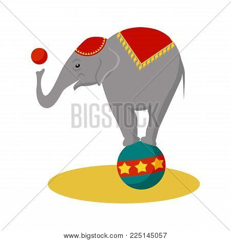 Circus elephant icon. Cartoon illustration of circus elephant. Vector isolated retro show flat icon for web.
