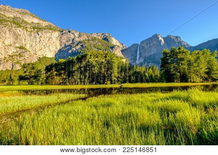Flooded meadow in Yosemite National Park Valley with Yosemite Falls. California, USA.