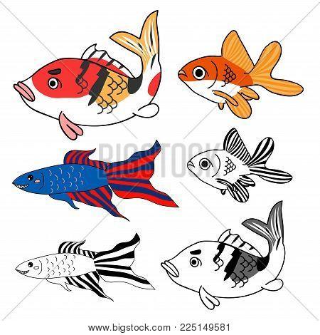 Carp, Goldfish, Siamese Fighting Fish Set. Vector Illustration. isolated on White Background.