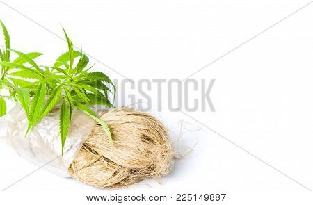 Marijuana leafs and cannabis hemp fibers isolated
