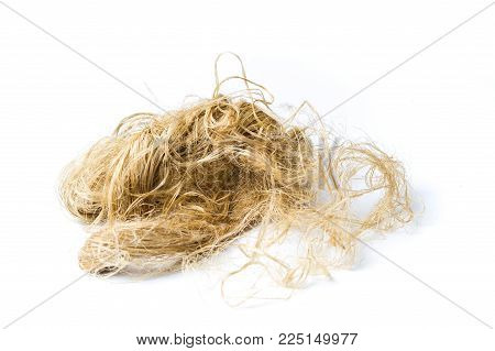 Cannabis hemp fibers isolated on white background