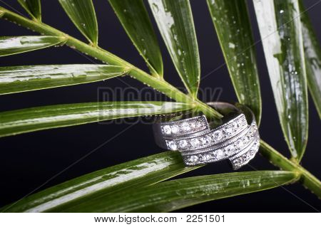 Green Leaf And Ring