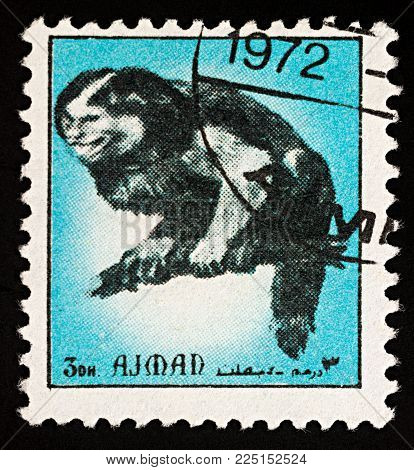Moscow, Russia - February 03, 2018: A stamp printed in Ajman shows monkey sitting on tree branch, series