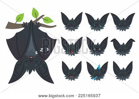 Bat sleeping, hanging upside down on branch. Animal emoticon set. Vector illustration of bat-eared grey creature with closed wings in flat style. Emotional heads of cute Halloween bat vampire. Emoji.