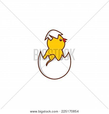 vector flat cute baby chicken Yellow small funny chick hatching from egg. Flat bird animal, isolated illustration on a white background, poultry, farm organic food products advertising design object.