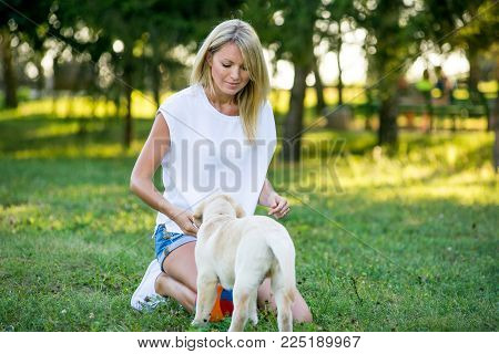 Beautiful young girl playing with a puppy labrador in the park in autumn. Beautiful blonde walks in the park with a white labrador.