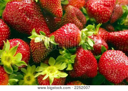 Strawberries Vol. 1