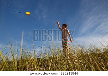 boy with a kite on a summer day. Young boy playing with craft kite