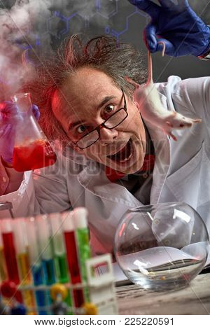 crazy scientist yelling while doing experiment on white mouse