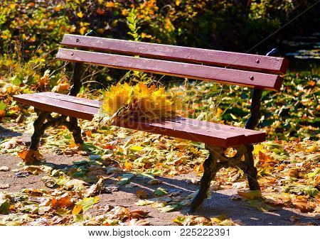 Park Bench, On The Bench Is A Wreath Of Yellow Leaves, Autumn