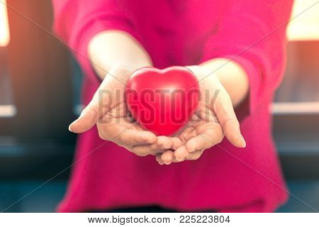 Female hands holding out red plastic hearts, good for love or valentine concept