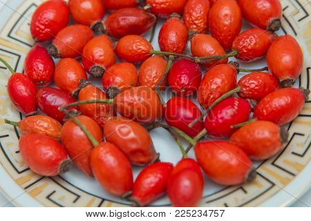 Rosehip in the plate . Top view of rose hips in bowl isolated on white . Rose hip isolated on a white background.
