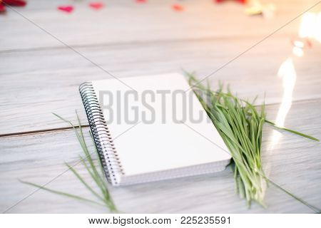 Notepad on a wooden background with young grass sprouts. Spring mocap.