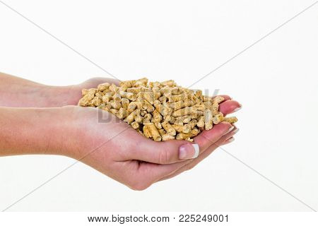 hand with pellets as alternative energy