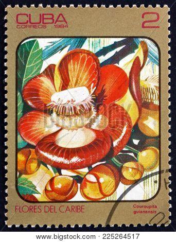 Cuba - Circa 1984: A Stamp Printed In Cuba Shows Cannonball Tree, Couroupita Guianensis, Is A Decidu