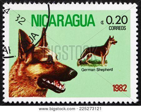 Nicaragua - Circa 1982: A Stamp Printed In Nicaragua Shows German Shepherd, Dog Breed, Circa 1982