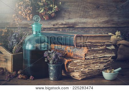 Tincture bottles, assortment of dry healthy herbs, old books, mortar, curative drugs. Herbal medicine. Retro styled.