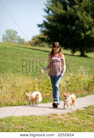 poster of Preteen girl walking her two Pomeranian puppies.