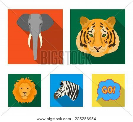 Tiger, lion, elephant, zebra, Realistic animals set collection icons in flat style vector symbol stock illustration .