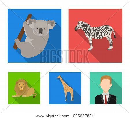 African zebra, animal koala, giraffe, wild predator, lion. Wild animals set collection icons in flat style vector symbol stock illustration .