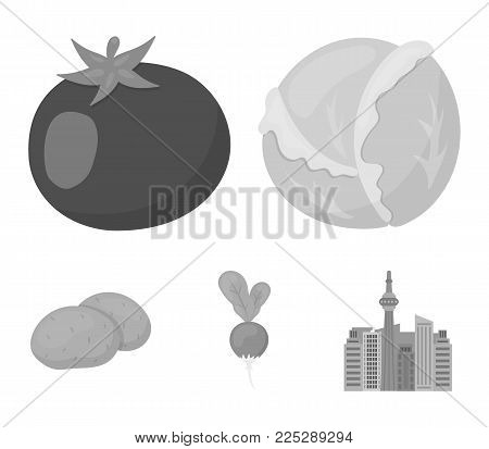 Cabbage white, tomato red, rice, potatoes. Vegetables set collection icons in monochrome style vector symbol stock illustration .