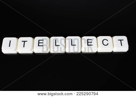 Intellect text word title caption label cover backdrop background. Alphabet letter toy blocks on black reflective background. White alphabetical letters..