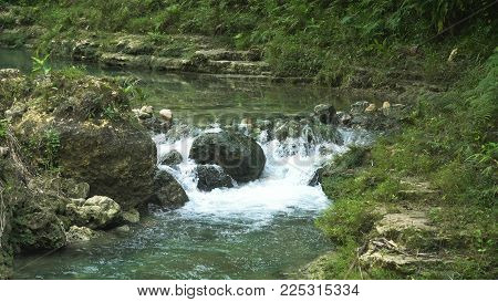 River flows through the rainforest in the jungle. Tropical river, jungle. Tropical Rainforest Landscape.
