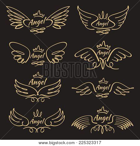 Elegant angel golden flying wings on black background. Flying angel with wing feather, golden linear winged, vector illustration