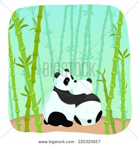 Romantic light template with embrace of two amorous pandas in bamboo forest vector illustration