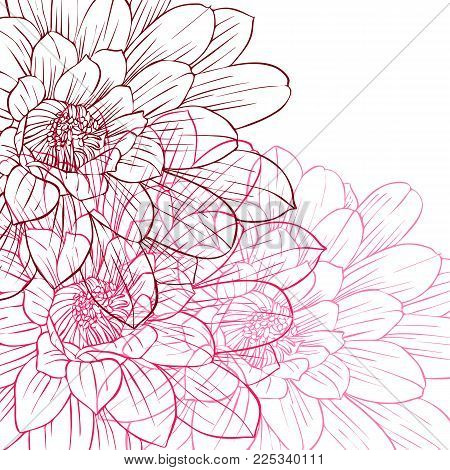 Pink flowers cover, floral color design, abstract nature background, hand drawn vector illustration