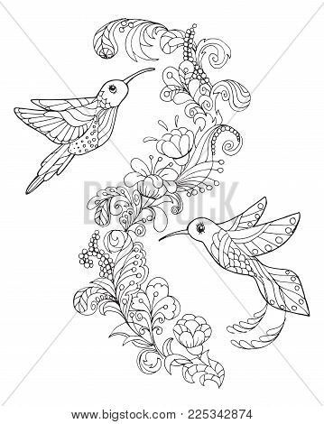 Page For Coloring Book With Two Hummingbirds. Graphic-based Illustration With Tropical Birds. Book R