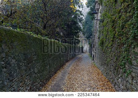 Narrow Foggy Street Among Old Ruins With Autumn Leaves On A Road In Bergamo Town, Italy