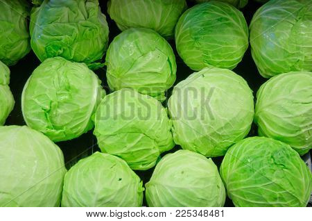 Group of fresh organically grown green and red cabbage in the farmer market
