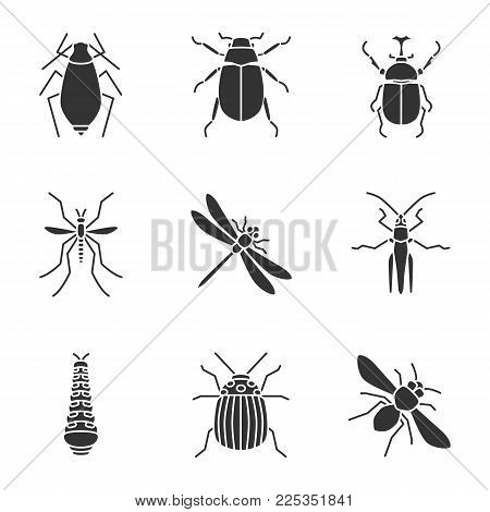 Insects glyph icons set. Aphid, maybug, hercules bug, mosquito, dragonfly, caterpillar, colorado beetle, grasshopper, honey bee. Silhouette symbols. Vector isolated illustration