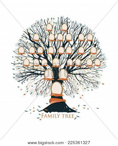 Family tree, pedigree or ancestry chart template with branches, leaves, empty photo frames isolated on white background. Representation of generations of relatives and ancestors. Vector illustration
