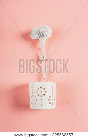 Single white flower in a flower pot on a pink background. Delicacy symbol.