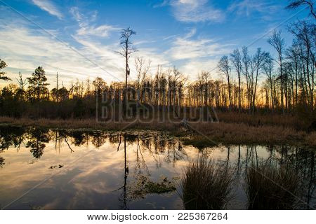 Okefenokee swamp of southern Georgia, USA at sunset.