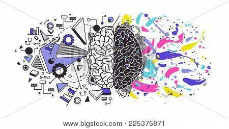 Human brain divided into right and left cerebral hemispheres responsible for different functions - creativity or arts and logic or logical thinking respectively. Colorful modern vector illustration