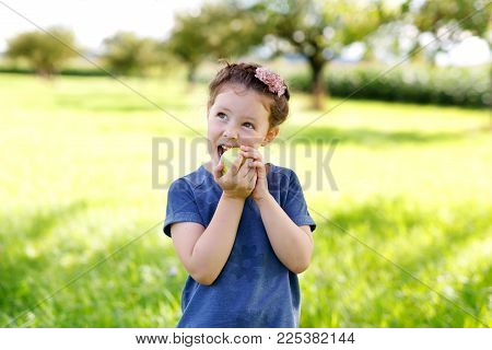 Adorable little preschool kid girl eating green apple on organic farm. Cute child helping with harvest on orchard or garden in late summer.