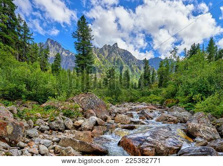 Mountain Stream On Sunny Day
