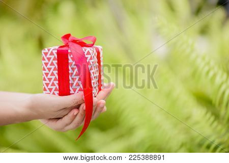 Closeup hand holding a gift box. Holidays, present, christmas, and happiness concept.