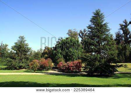 Bonito Jardim Em Santiago No Chile - Março 2016.