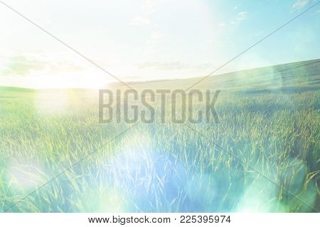 Summer green meadow under blue sky with clouds, light boke. Blurred Nature Abstract Background
