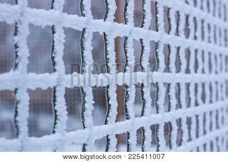 Frozen Metal Iron Net Grid Covered With Frost In Winter