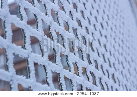 Frozen Metal Iron Chequer Grid Covered With Frost In Winter
