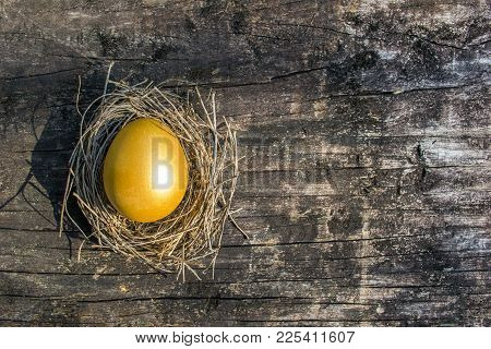 Golden Egg Opportunity Concept Of Wealth And A Chance To Be Rich