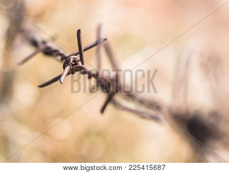 Human Rights And Social Justice Abstract Concept With Blurry Barbed Wire Rod Fence, Candle Light Lit